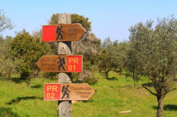 Herdade Sesmarias Turismo Rural Alentejo